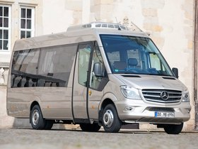 Ver foto 8 de Mercedes Sprinter Travel 65 2014