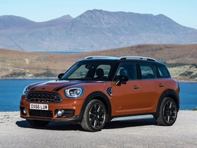 Ver foto 23 de Mini Cooper S Countryman All4 F60 2017