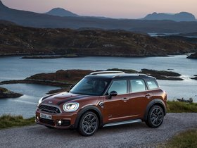 Ver foto 17 de Mini Cooper S Countryman All4 F60 2017