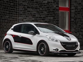 Fotos de Peugeot Musketier 208 Engarde 2013