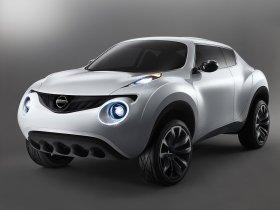 Ver foto 1 de Nissan Qazana Concept 2009