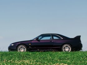 Ver foto 17 de Nissan Skyline GT-R BCNR33 1995