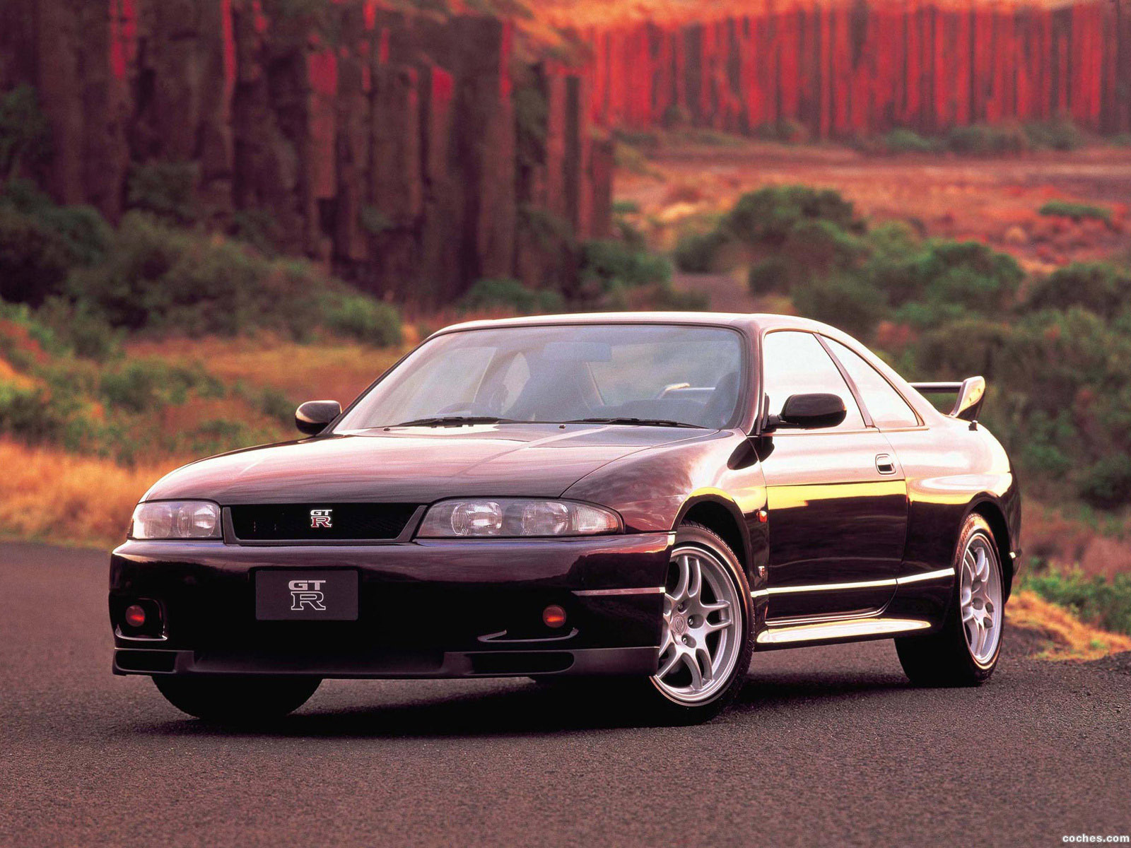Foto 0 de Nissan Skyline GT-R BCNR33 1995