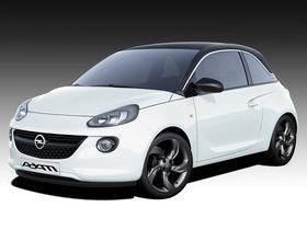 Ver foto 13 de Opel Adam 2013
