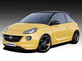 Ver foto 10 de Opel Adam 2013