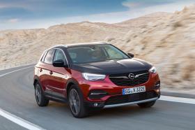 Ver foto 10 de Opel Grandland X Hybrid4  2019