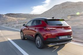 Ver foto 20 de Opel Grandland X Hybrid4  2019