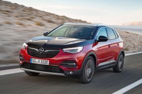 Ver foto 9 de Opel Grandland X Hybrid4  2019