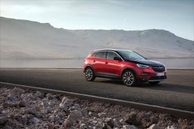 Ver foto 1 de Opel Grandland X Hybrid4  2019