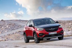 Ver foto 18 de Opel Grandland X Hybrid4  2019