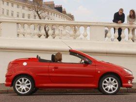 Ver foto 13 de Peugeot 206 CC 2003