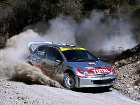 Ver foto 15 de Peugeot 206 WRC 1999