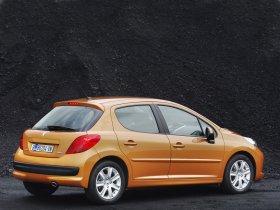 Ver foto 13 de Peugeot 207 2006
