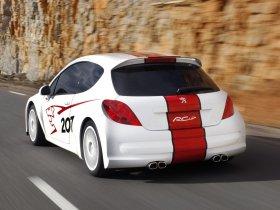 Ver foto 3 de Peugeot 207 RCup 2006