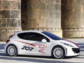 Ver foto 2 de Peugeot 207 RCup 2006
