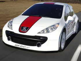 Fotos de Peugeot 207 RCup 2006