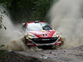 Ver foto 15 de Peugeot 207 S2000 2008