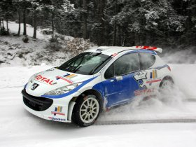 Ver foto 11 de Peugeot 207 S2000 2008