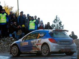 Ver foto 9 de Peugeot 207 S2000 2008