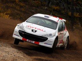 Ver foto 7 de Peugeot 207 S2000 2008