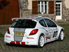 Ver foto 6 de Peugeot 207 S2000 2008