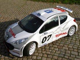 Ver foto 2 de Peugeot 207 S2000 2008
