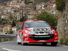 Ver foto 24 de Peugeot 207 S2000 2008