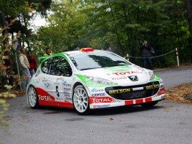 Ver foto 23 de Peugeot 207 S2000 2008