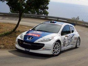 Ver foto 21 de Peugeot 207 S2000 2008