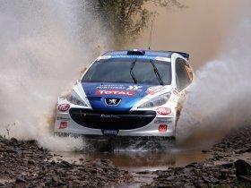 Ver foto 19 de Peugeot 207 S2000 2008