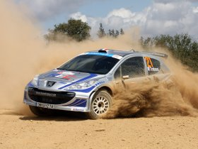 Ver foto 18 de Peugeot 207 S2000 2008