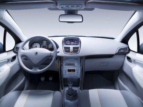 Ver foto 7 de Peugeot 207 SW Outdoor Concept 2007