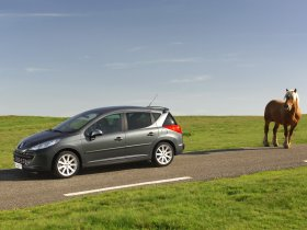 Ver foto 9 de Peugeot 207 SW RC 2007