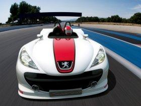 Ver foto 2 de Peugeot 207 Spyder Concept 2006