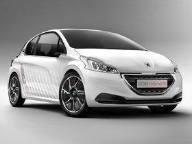 Ver foto 3 de Peugeot 208 HYbrid FE Concept 2013