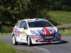 Ver foto 4 de Peugeot 208 R2 Chris Ingram 2014