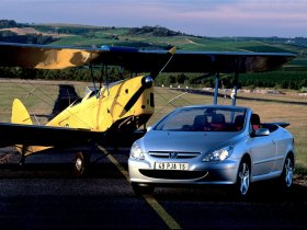 Ver foto 14 de Peugeot 307 CC 2003