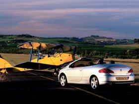 Ver foto 13 de Peugeot 307 CC 2003