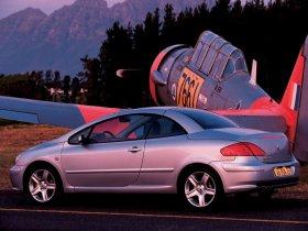 Ver foto 18 de Peugeot 307 CC 2003