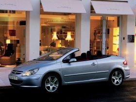 Ver foto 16 de Peugeot 307 CC 2003