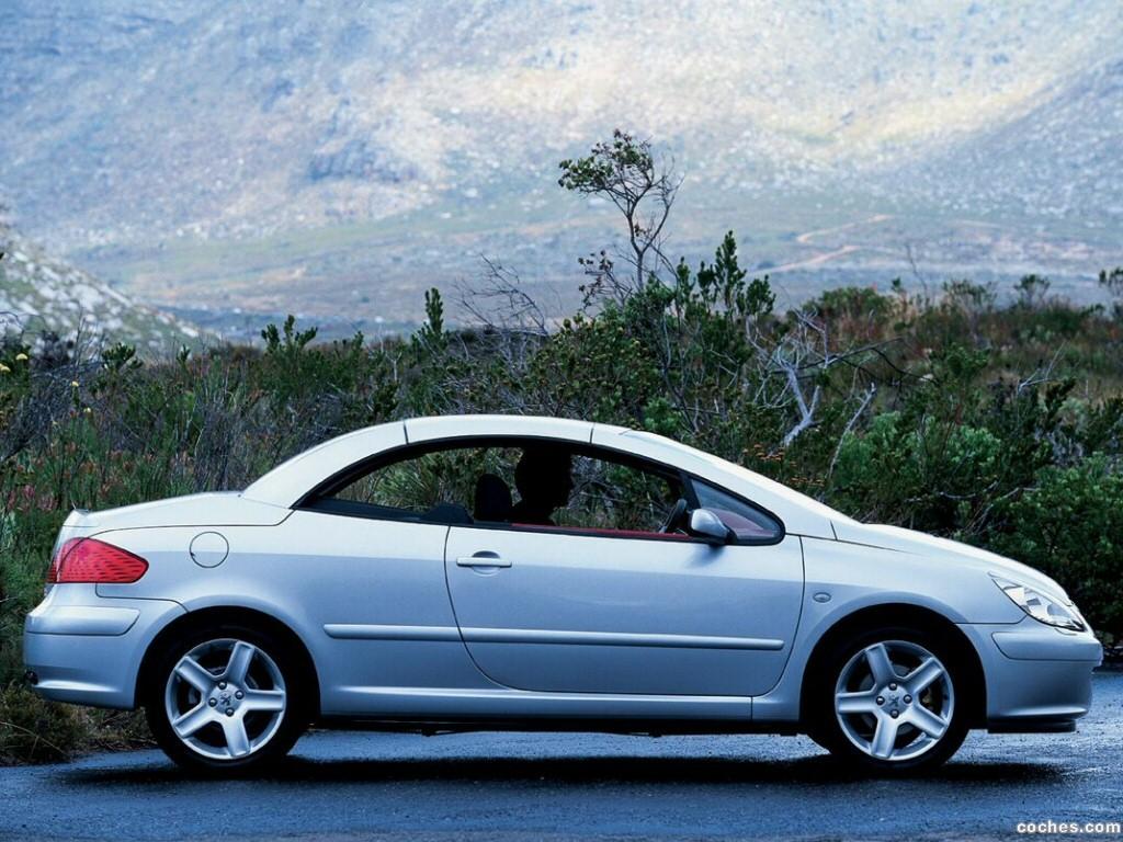 Foto 18 de Peugeot 307 CC 2003