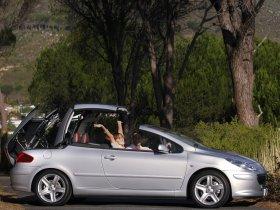 Ver foto 3 de Peugeot 307 CC Facelift 2005