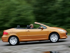 Ver foto 5 de Peugeot 307 CC Facelift 2005