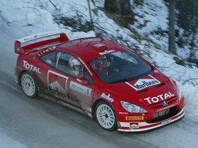 Ver foto 21 de Peugeot 307 CC WRC 2004