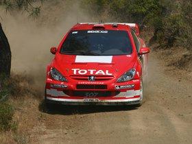 Ver foto 14 de Peugeot 307 CC WRC 2004