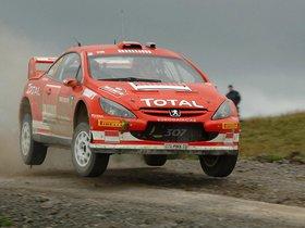 Ver foto 13 de Peugeot 307 CC WRC 2004