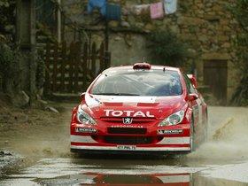 Ver foto 11 de Peugeot 307 CC WRC 2004