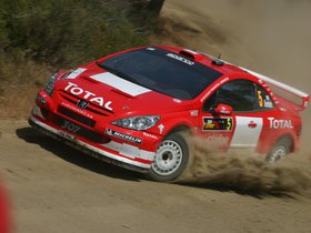 Ver foto 8 de Peugeot 307 CC WRC 2004