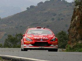 Ver foto 5 de Peugeot 307 CC WRC 2004