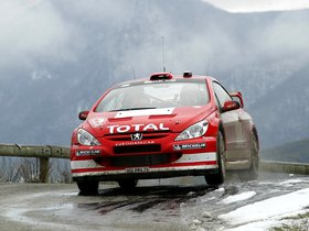 Ver foto 27 de Peugeot 307 CC WRC 2004